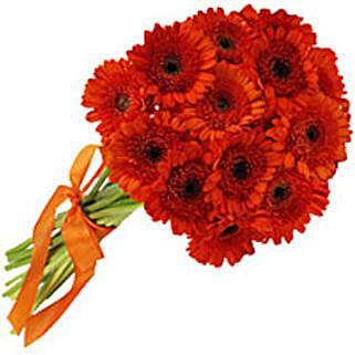 Crimson Elegance sing: Send Christmas Flowers to Singapore