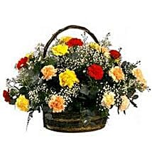 Rainbow Carnation Basket SA: Send Diwali Gifts to South Africa