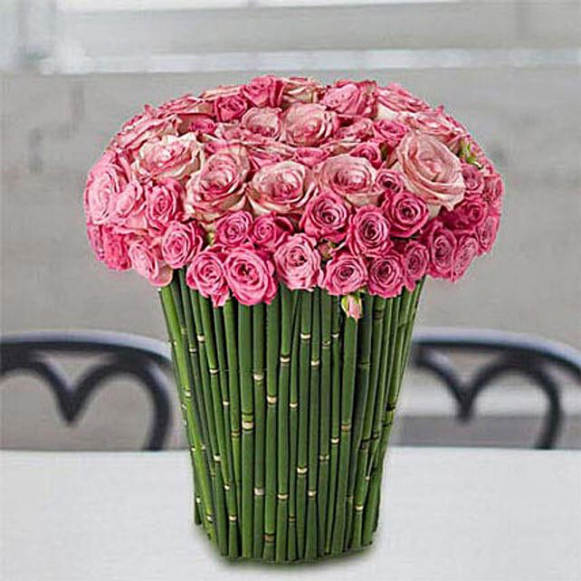 Plushy Pink