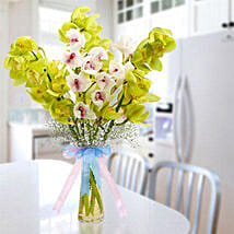 Cymbidium Bunch: Same Day Flower Delivery in Sharjah