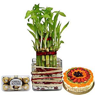 Lucky Sweet Combo: Buy Plants in Dubai, UAE