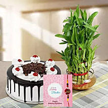 Rakhi with Cake and Plant: Send Rakhi for Brother to UAE