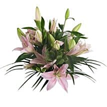 Lush Lillies in Pink: Gifts to Leeds