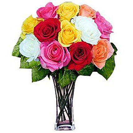 12 Long Stem Assorted Roses