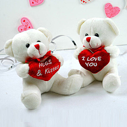 Cute Love Teddy Combo