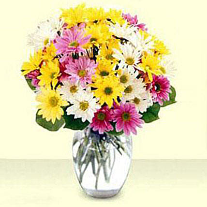Mixed Daisy Bouquet