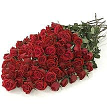 100 Long Stem Red Roses: Send Flowers to Columbus
