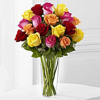 18 Bright Spark Roses: Roses