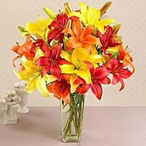 California Mixed Asiatic Lilies: Send New Year Gifts to USA