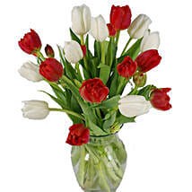 Christmas Mixed Tulips: Send Miss You Flowers to USA