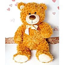 Cute Brown Teddy Bear: Valentine's Day Gift Delivery in Columbus