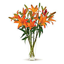 Lovely Lilies: Send Lilies to USA