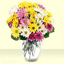 Mixed Daisy Bouquet: Best Selling Gifts in USA