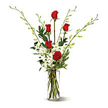 Pure Elegance: Rose Day Gift Delivery in USA
