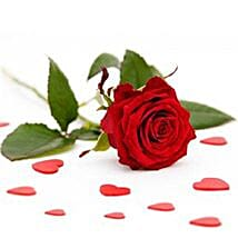 Single Red Roses: Send Gifts to San Jose