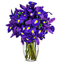 Stunning Blue Iris 10 Stems: Send Mothers Day Flowers to USA